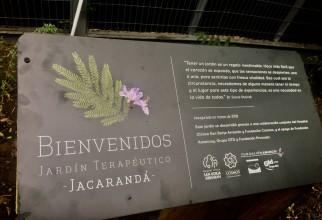 JARDÍN TERAPÉUTICO JACARANDÁ